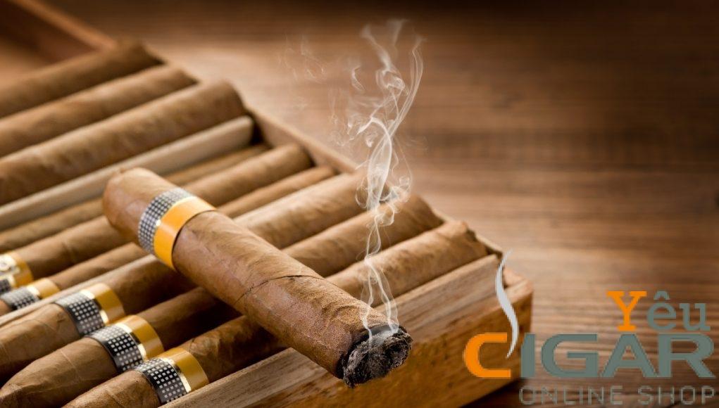 Chống buôn lậu, vận chuyển, kinh doanh trái phép xì gà